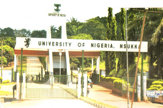 university of nigeria school fees