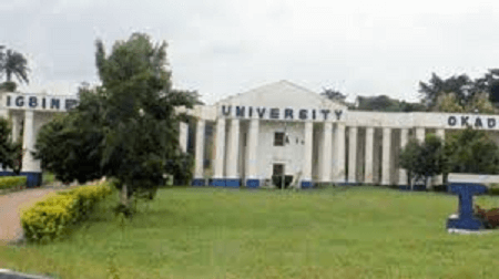 igbinedion university school fees