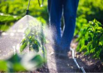 Prices of Herbicides in Nigeria (September 2021)