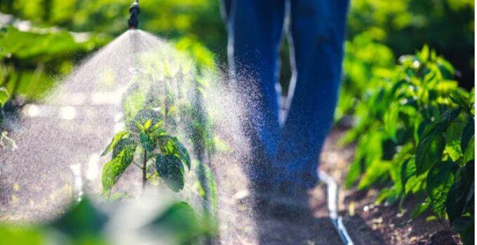 Prices of Herbicides in Nigeria (June 2021)