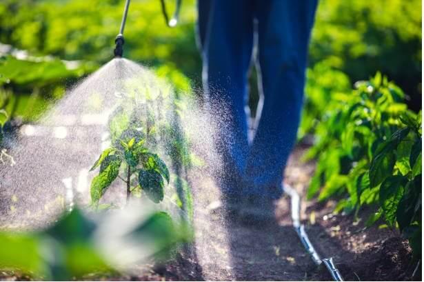 Prices of Herbicides in Nigeria