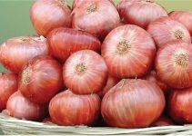 Prices of Onions in Nigeria (October 2021)