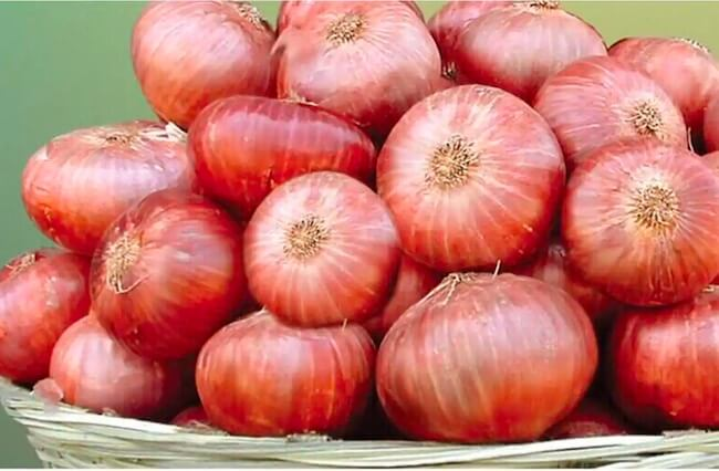 prices of onions in nigeria