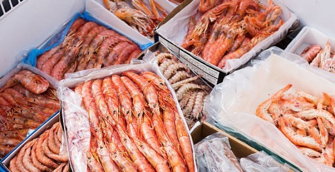 Crayfish Selling Business in Nigeria & Starting Costs (2021)